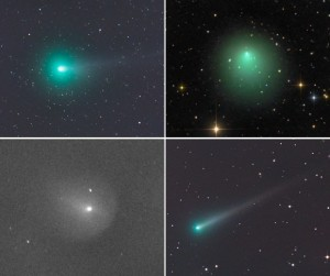 No fewer than four bright-ish comets greet skywatchers an hour before the start of dawn. From upper left counterclockwise: C/2013 R1 Lovejoy, 2P/Encke, C/2012 X1 and ISON. Credits: Gerald Rhemann, Damian Peach, Gianluca Masi and Gerald Rhemann